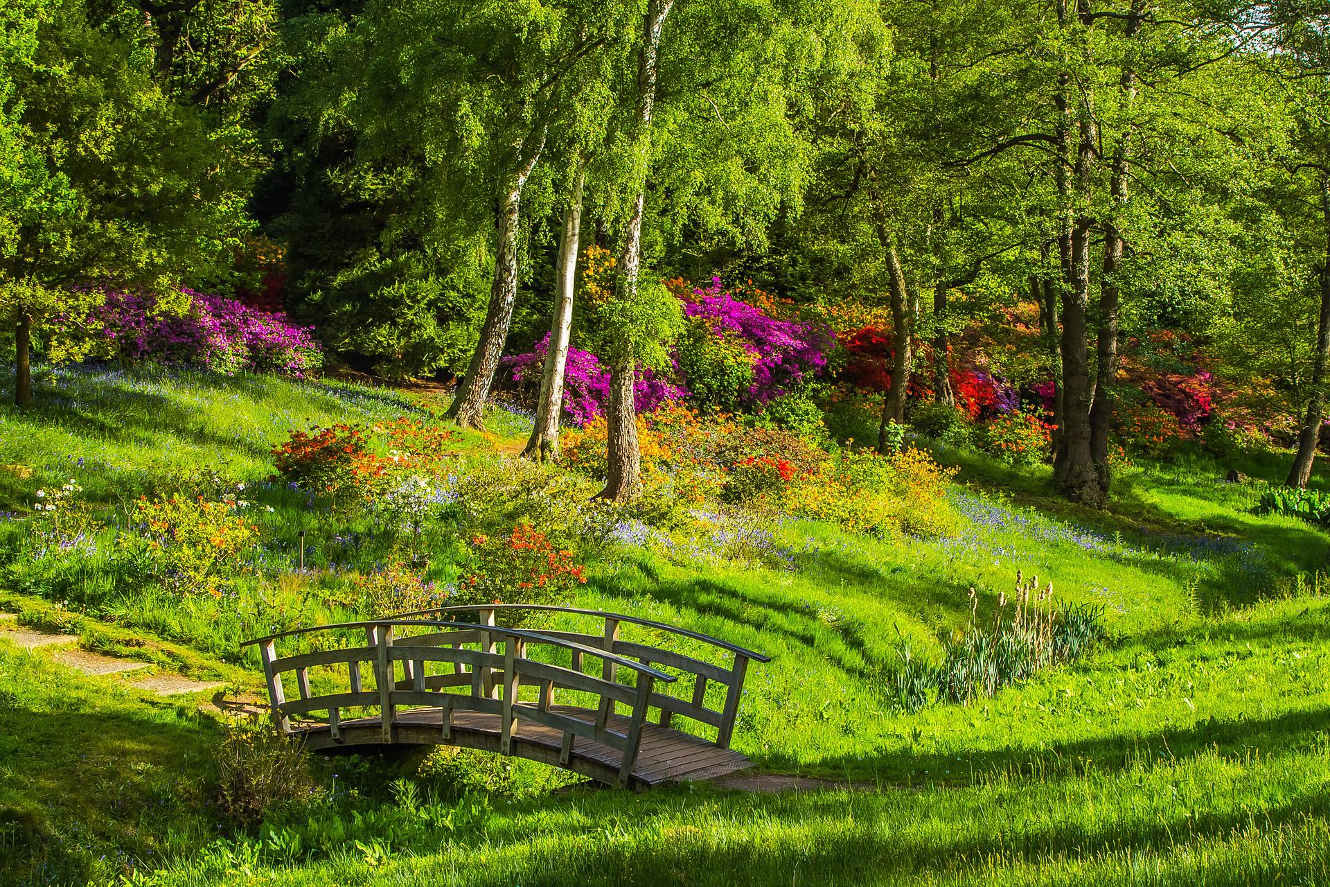 見渡せる公園の眺め